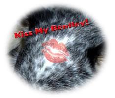 Kiss My Bentley!