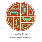Turtle Life Cycle - Logo Style