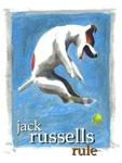 Jack Russells Rule