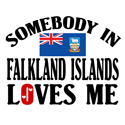 Somebody In Falkland Islands T-shirt