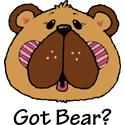 Bear T-shirt, Bear T-shirts & Bear Gifts