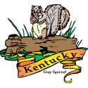 Kentucky Gray Squirrel