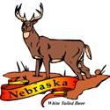 Nebraska State Animal