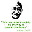Mahatma Gandhi T-shirt & Gift