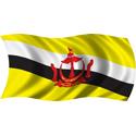 Wavy Brunei Flag