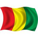 Wavy Guinea Flag