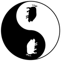 Yin Yang Pig