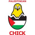 Palestinian Chick