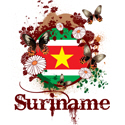 Butterfly Suriname