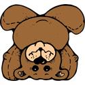 Upside Down Bear