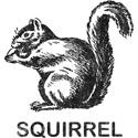 Vintage Squirrel