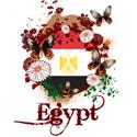 Butterfly Egypt