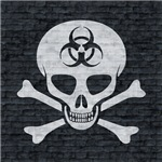 Skull & Crossbones (brick wall)