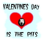 VALENTINES DAY IS THE PITS
