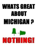 WHATS GREAT ABOUT MICHIGAN?