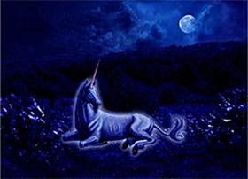 Midnight Unicorn by Marc Brinkerhoff