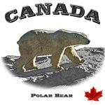Canada - the Polar Bear