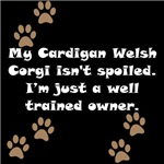 Well Trained Cardigan Welsh Corgi Owner