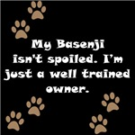 Well Trained Basenji Owner