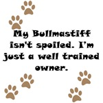 Well Trained Bullmastiff Owner