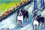 Boston Terrier walkers