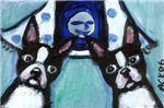 Boston Terrier Two smiling moon