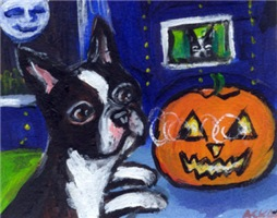 BOSTON TERRIER Halloween Pumpkin Design