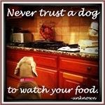 Food Watcher