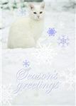 Ye Olde Holiday Card  Shoppe