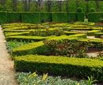 Garden of Xs, Photo / Digital Painting