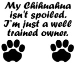 Well Trained Chihuahua Owner