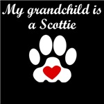 Scottie Grandchild