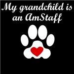 AmStaff Grandchild