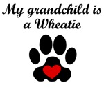 Wheatie Grandchild