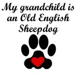 Old English Sheepdog Grandchild