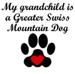 Greater Swiss Mountain Dog Grandchild