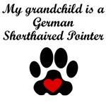 German Shorthaired Pointer Grandchild