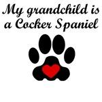 Cocker Spaniel Grandchild