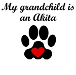 Akita Grandchild