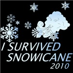 I Survived Snowicane T-Shirts