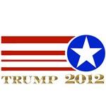 Donald Trump 2012 President