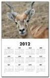 Calendar prints