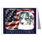 Creative Aussie Shepherd Post Cards or Note Cards