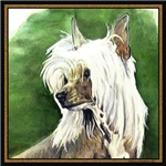 Colorful Chinese Crested Dog Products & Gifts