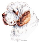 Contemporary Clumber Spaniel Dog Products & Gifts