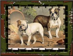 Antique Bulldog Designs