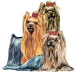 Yorkshire Terrier Yorkie Collage Unique Gift Items