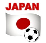 Japan Football 2014
