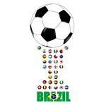 Brazil 6-0142