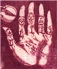 Palmistry Passion